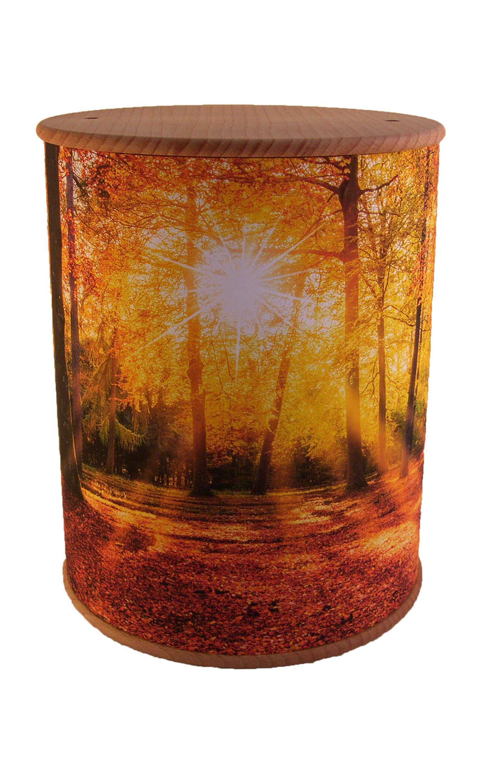 en ZB002 photo urn autumn forest funeral urns on sale