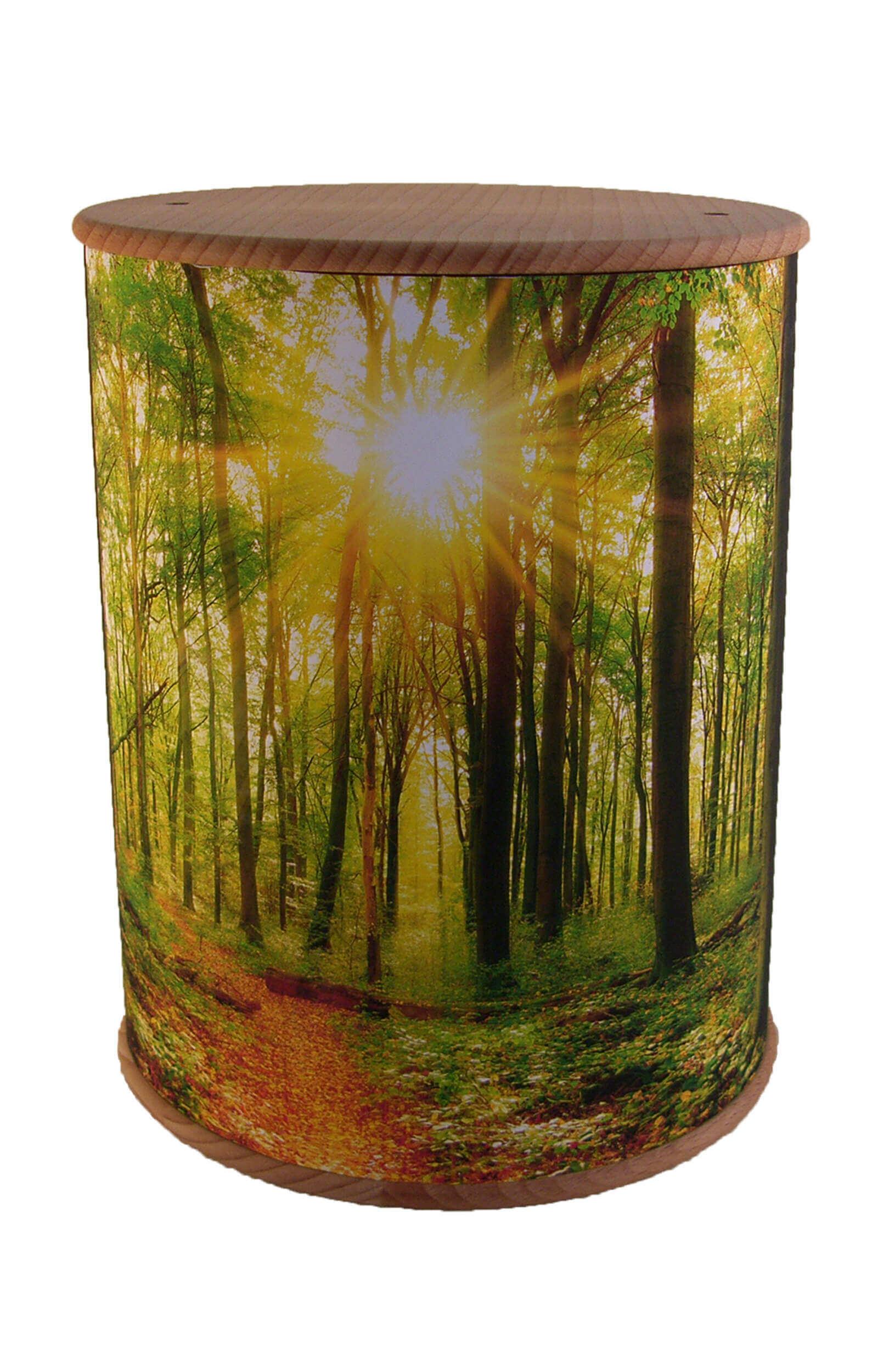 en ZB004 photo urn forest and light