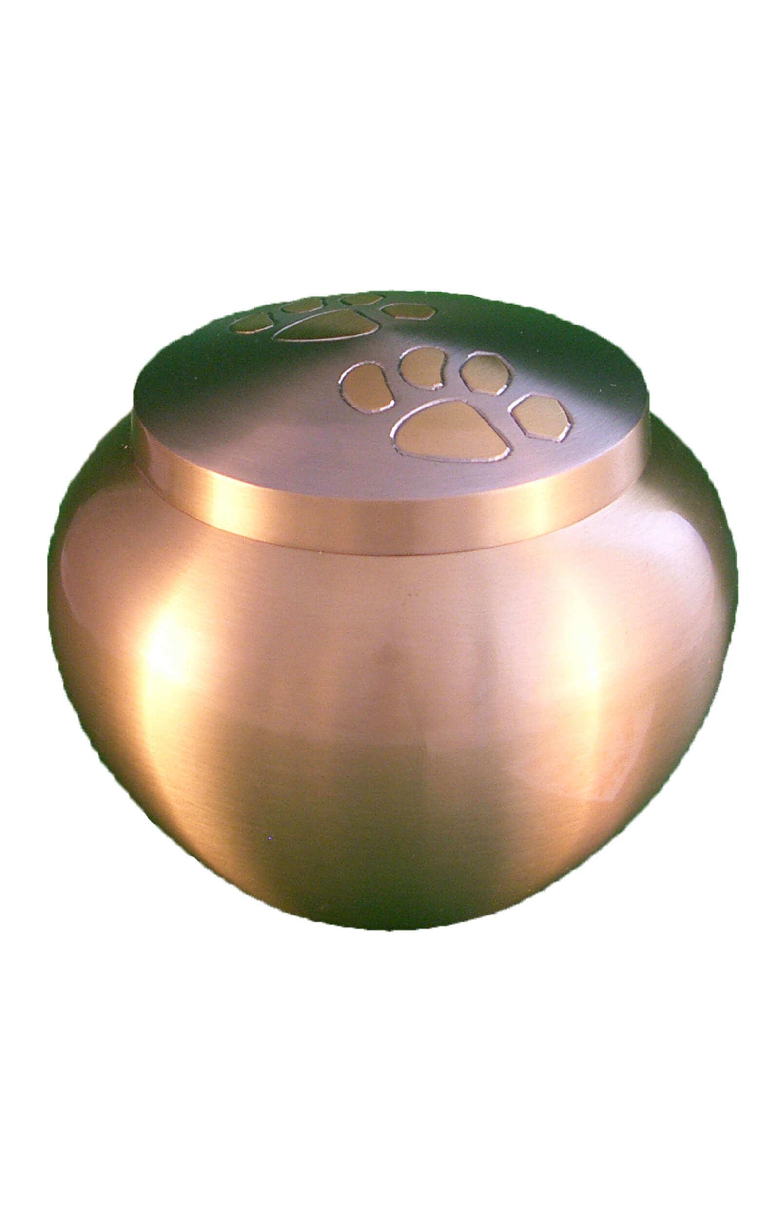 en TIB1545AEXL silver pawprint pet urn jpg